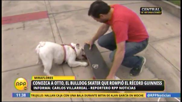 Ambos canes practican el skate diariamente en el malecón de Miraflores.
