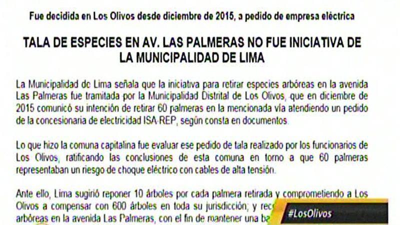 Este es el comunicado enviado por la Municipalidad de Lima sobre la tala de palmeras.