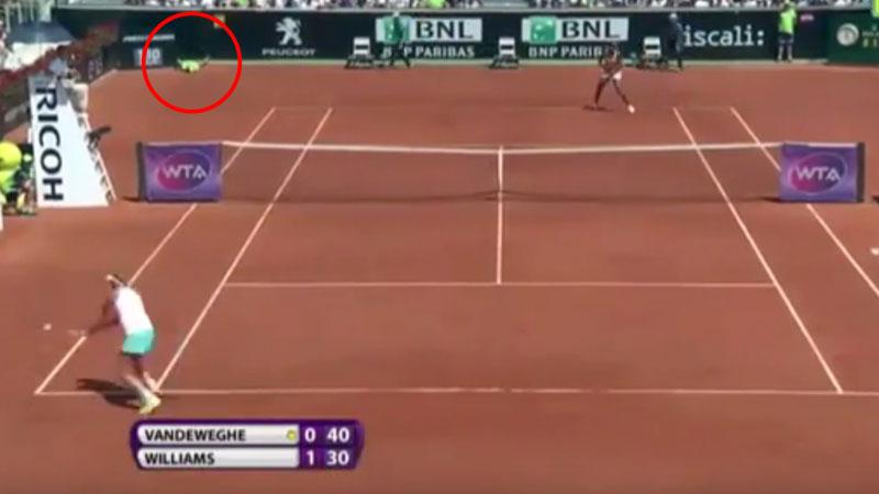 Un recogebolas cayó en el duelo entre Venus Williams y Coco Vandeweghe.