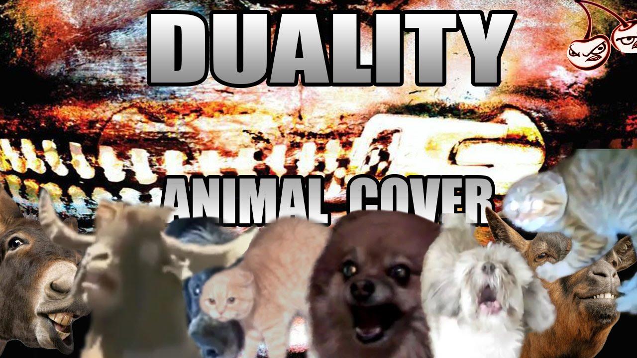 Download video slipknot duality 3gp - Download maxxspy app