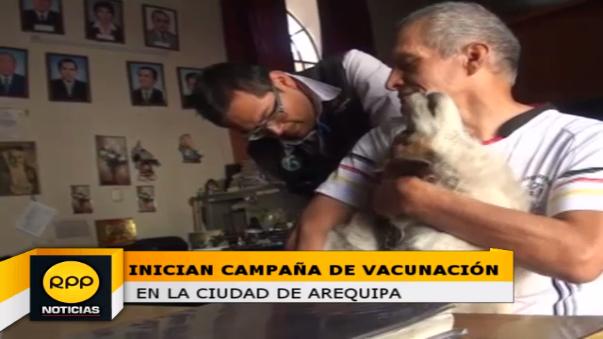 La meta a vacunar en esta campaña es de 163 mil perros de la provincia de Arequipa.