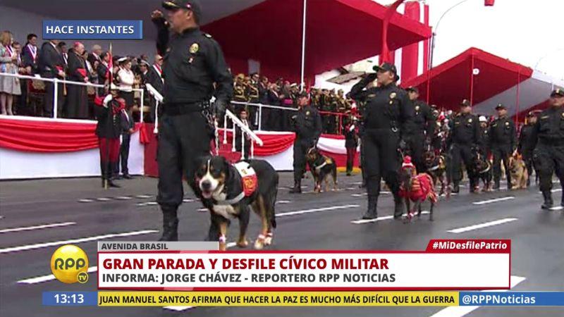 'Lorenzo' encabezó el regimiento de la Policía Canina.
