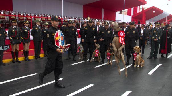 Los juguetones canes de la Policía Nacional se roban el show en la previa del desfile.