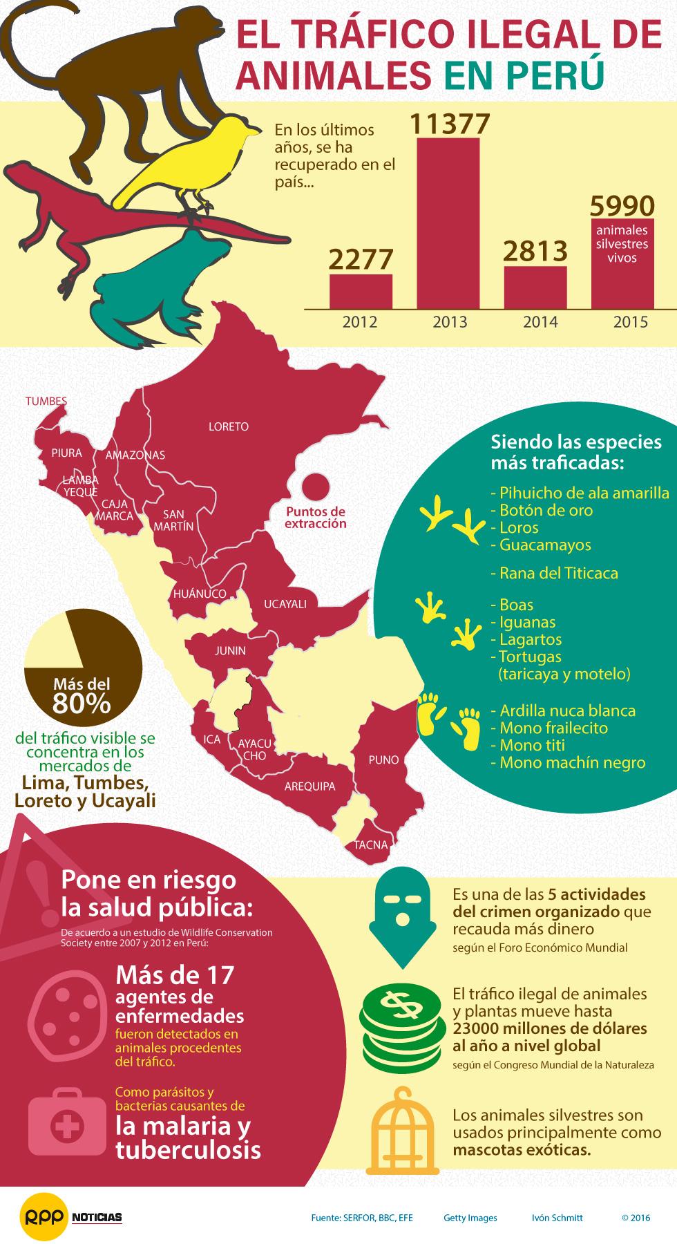 Tráfico ilegal de animales silvestres en Perú