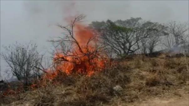 Existen 20 puntos de incendios en las zonas rurales de los distritos de Inkawasi, Kañaris y Salas.