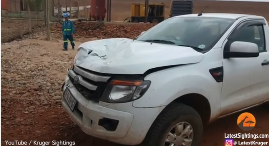 El video fue subido ayer a YouTube. Así quedó la camioneta luego del ataque del hipopótamo.