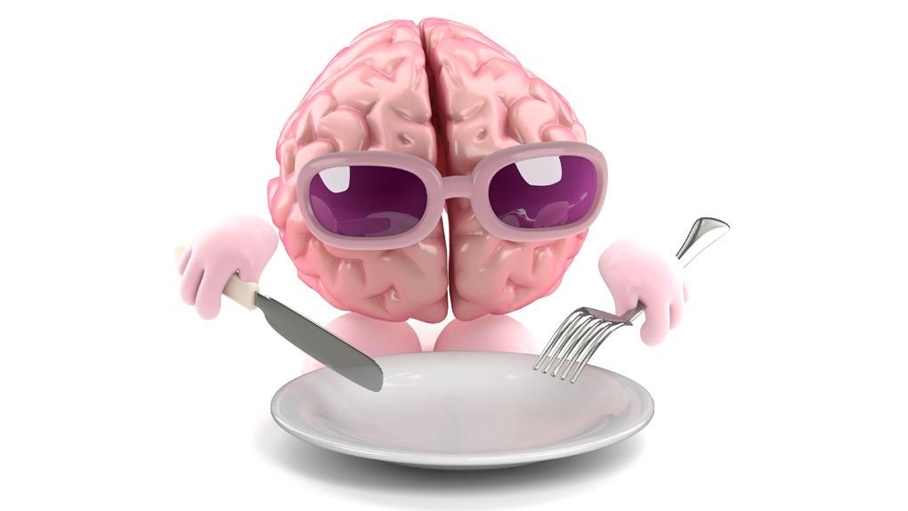 El cerebro es responsable de funciones vitales del organismo, como los latidos cardíacos y la presión arterial.