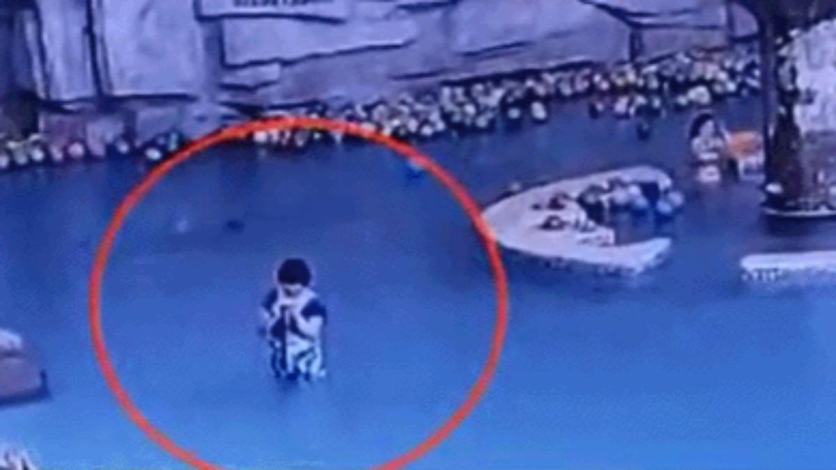 Niño murió ahogado en piscina mientras su madre revisaba el celular