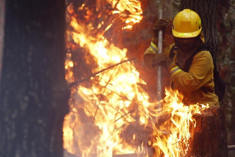 Un grupo de bomberos colombianos comienzan los trabajos para ayudar a contener el fuego de un incendio forestal en la localidad de Palomares en la región del Biobío, ubicado aproximadamente a unos 490 kilómetros al sur de Santiago (Chile).