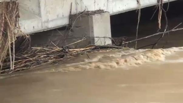 Alerta en Piura por aumento del caudal que podría generar desbordes en zonas aguas abajo del puente Independencia.