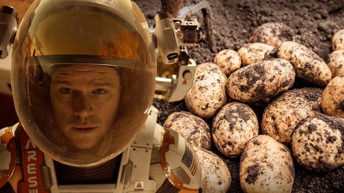 En la película 'The Martian' (2015), Matt Damon interpreta a un astronauta que logra sobrevivir en Marte tras cultivar papas.