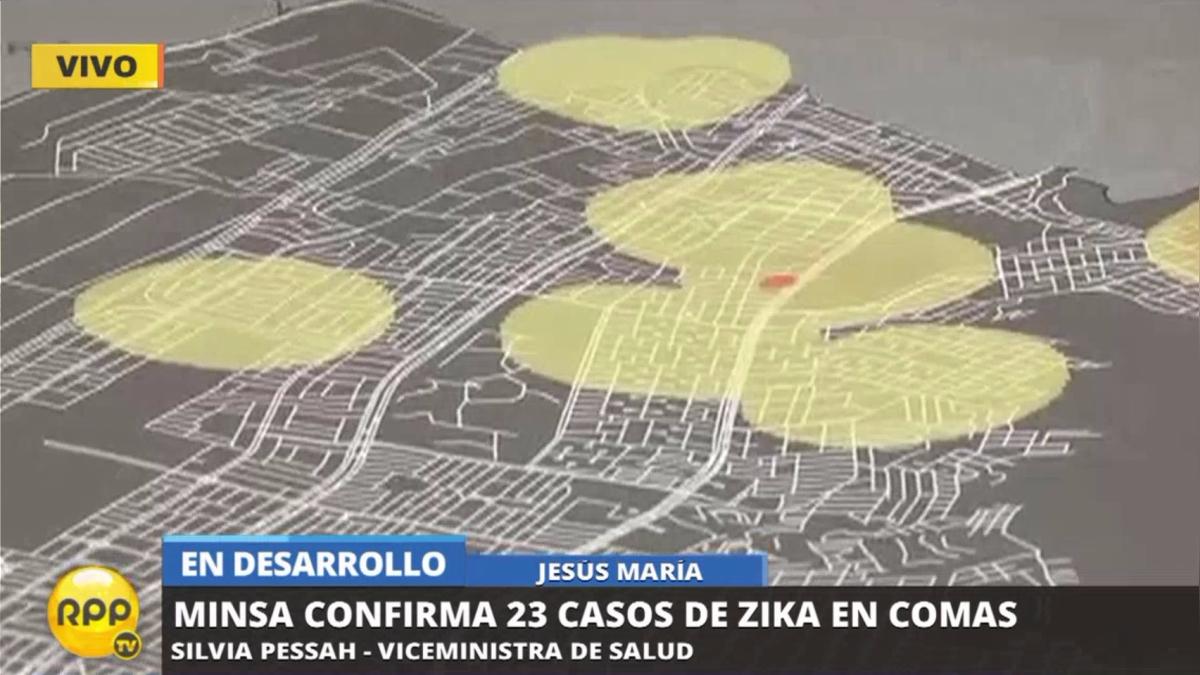 La viceministra de Salud explicó el brote de zika en Comas