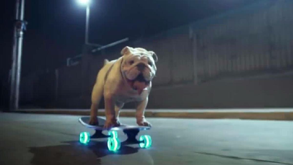 El spot que protagoniza el bulldog.