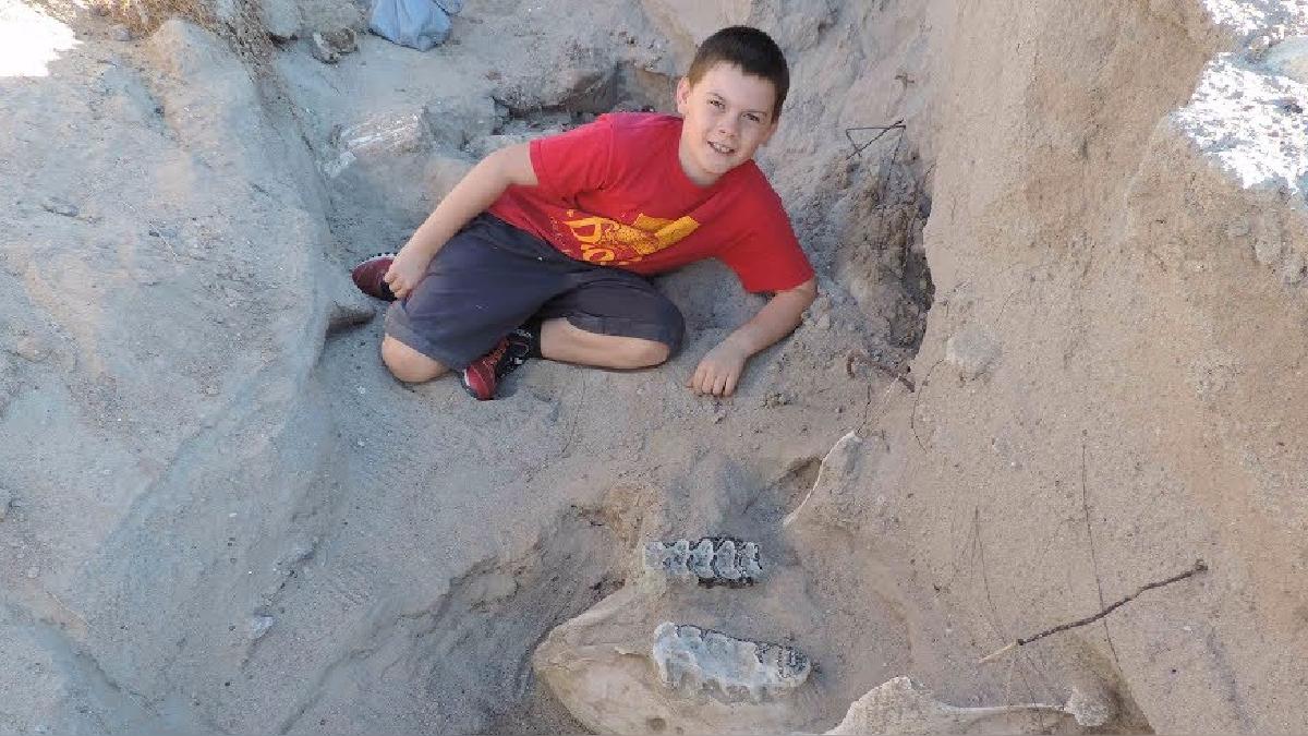 Un niño encontró un fósil mientras paseaba con su familia.