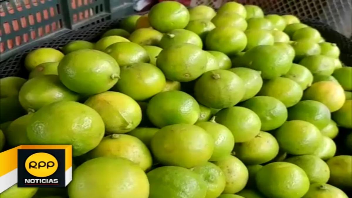 El alza del precio del limón se debe a que el Fenómeno El Niño Costero afectó la producción en los valles de Olmos y Motupe.