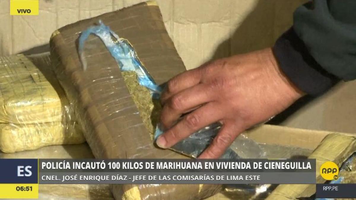 La marihuana estaba distribuida en cajas, en 100 paquetes con forma de ladrillo.