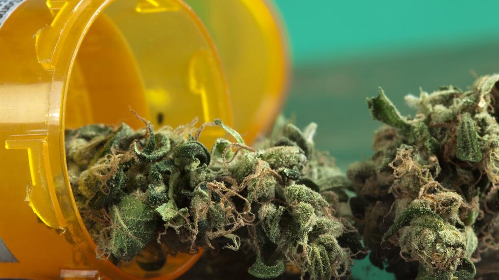 El Colegio Médico del Perú apoya la legalización del uso medicinal de la marihuana.