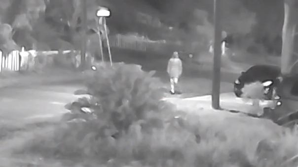 La Policía de Tampa mostró este video del principal sospechoso de los crímenes.