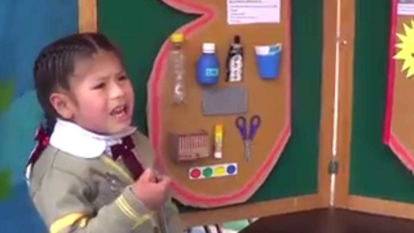 La pequeña Brigitte de tres años explicó al director de su colegio un experimento que resulta ser de gran ayuda a la población.