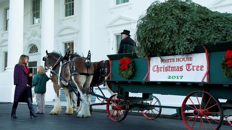 Los encargados de recibir el tradicional árbol fueron Melania Trump y su hijo, Barron.