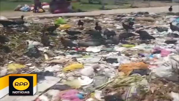 Parques invadidos por gallinazos en José Leonardo Ortiz