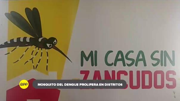 Dengue amenaza