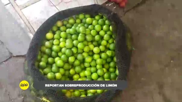 Anuncian que el limón se mantendrá barato hasta mediados de año.