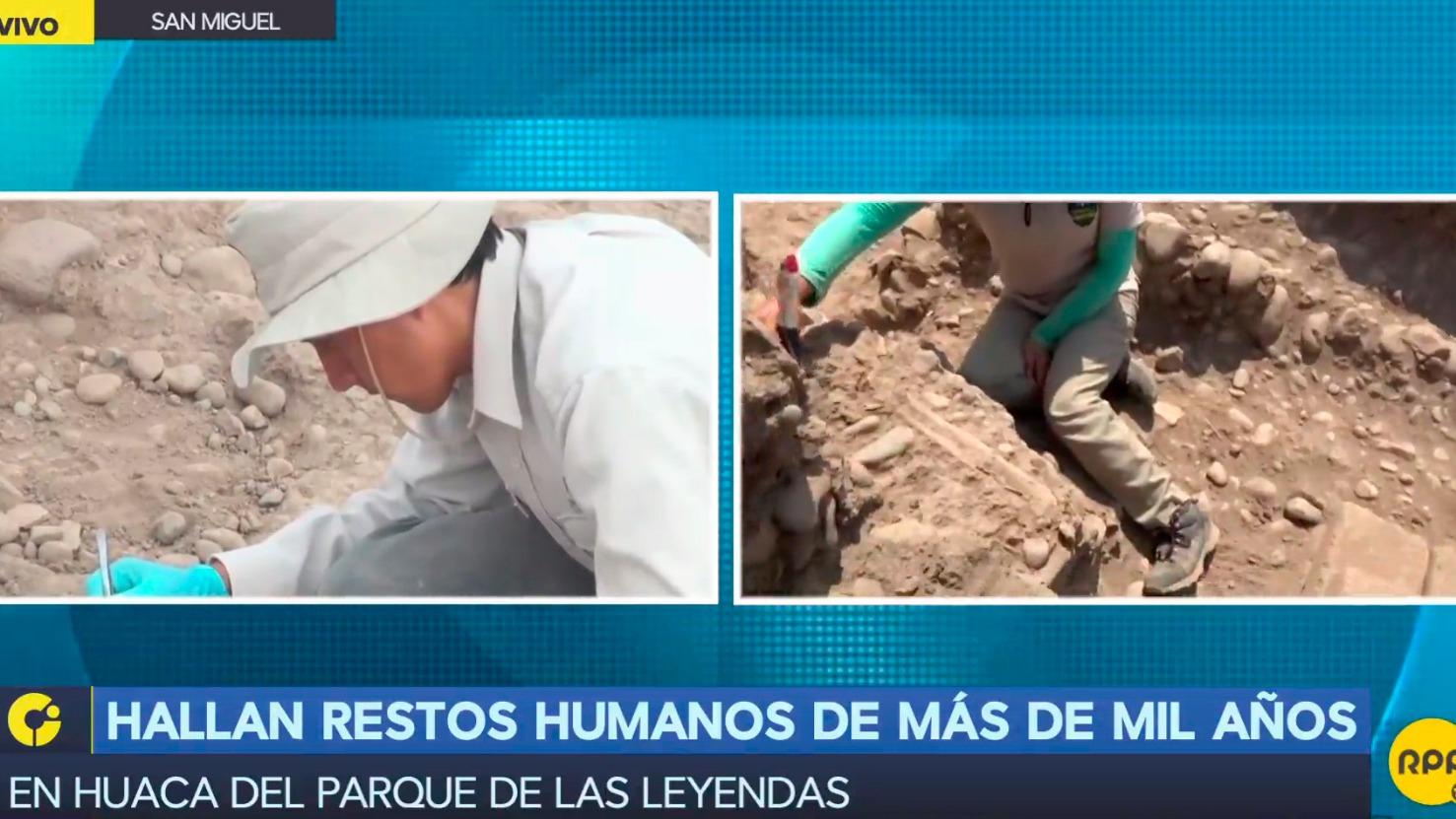 Hallan restos óseos de más de mil años en huaca del parque de las Leyendas