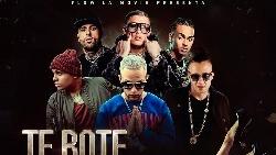 Te Bote remix