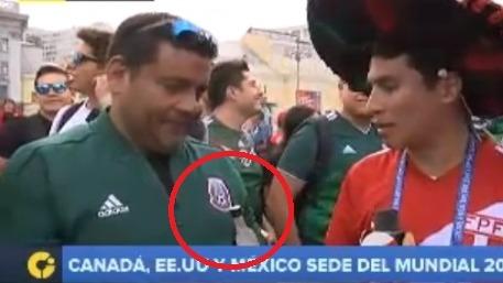 La Selección Peruana integra el Grupo C del Mundial.