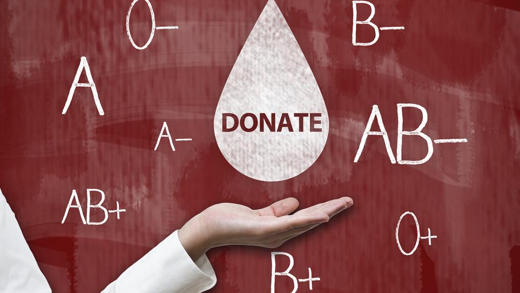 Cuanto se tarda en donar sangre